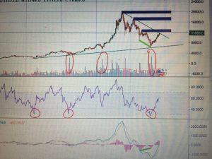 Roman Marko – BTC/USD Bitfinex 1D sviečky
