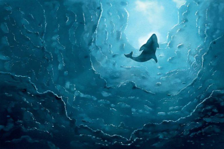 [Zprávy] • Velryba přesouvá 8800 BTC • Kraken vybral 13,5 mil. USD • a další zprávy dne