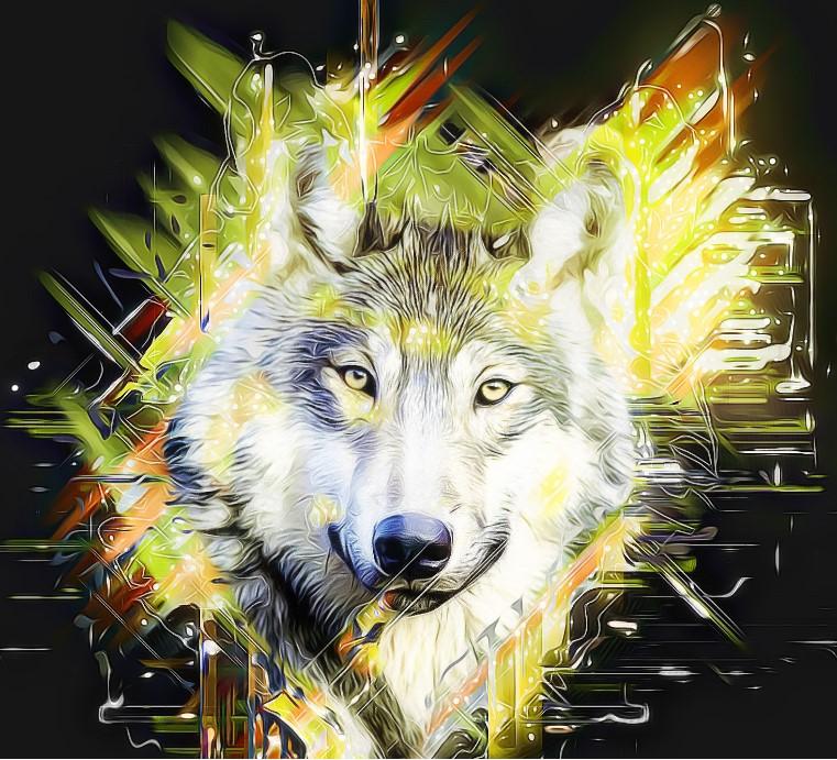 Co si obchodník, který inspiroval film Vlk z Wall Street, myslí o kryptoměnách?