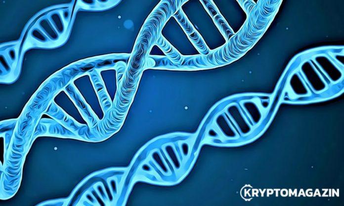 DNA evoluce