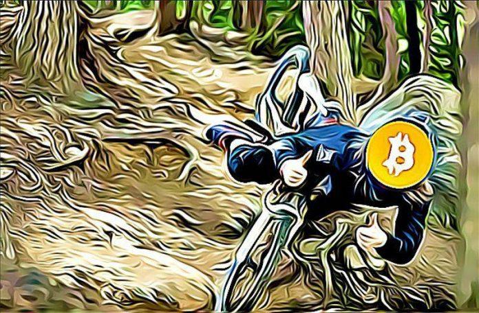Bitcoin dump pall pad