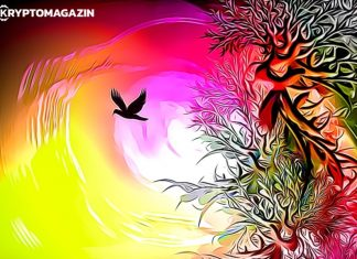 pták, barvy