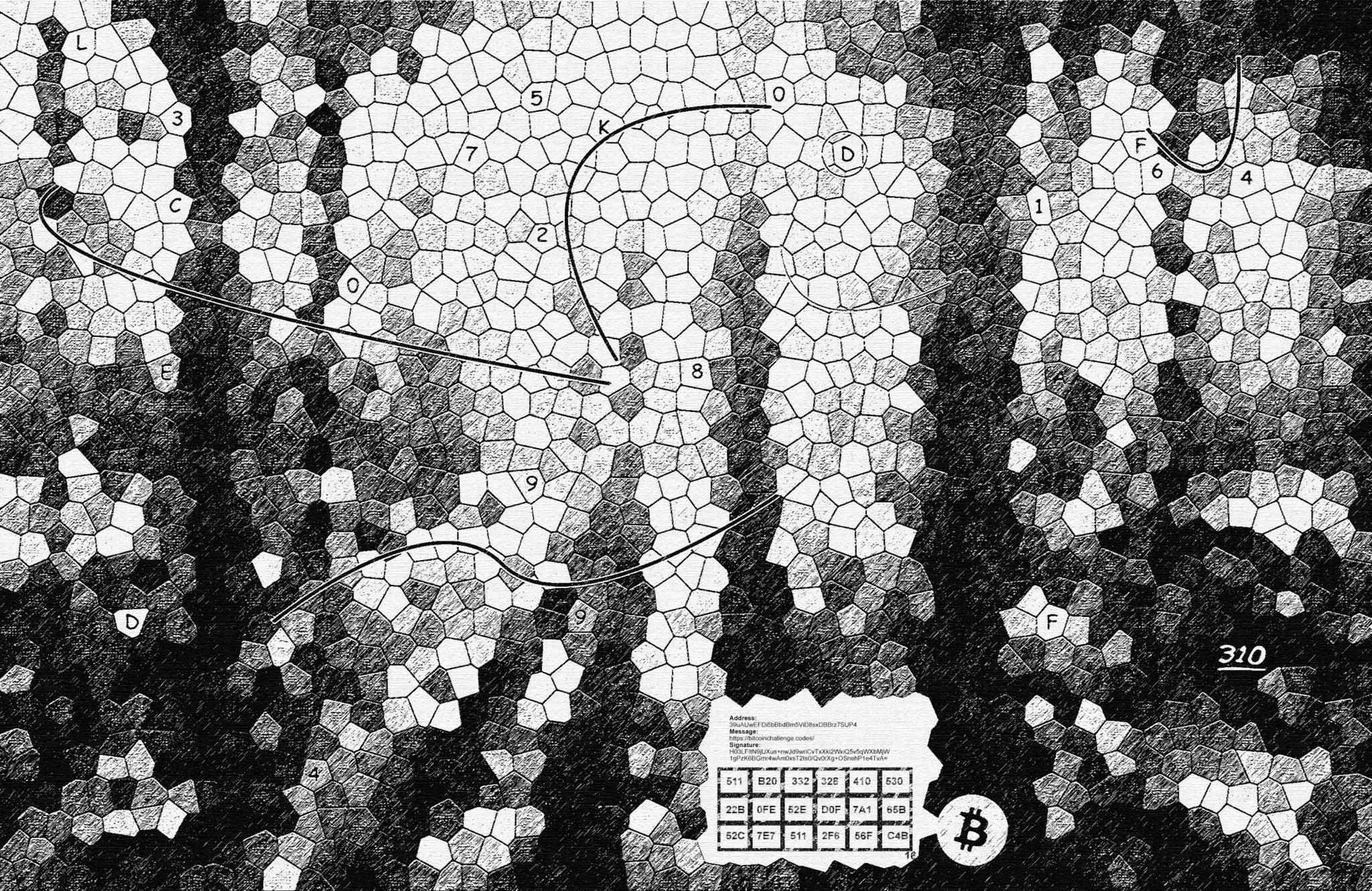 Bức ảnh chứa câu đố trị giá 310 Bitcoin