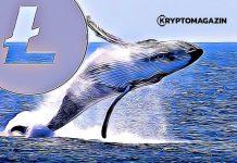 litecoin velryba whale
