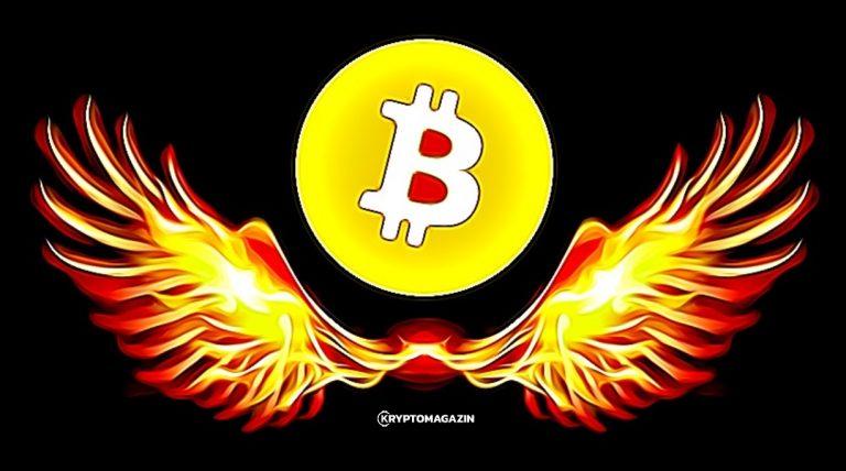 Bitcoin letos překonal Nasdaq 100 a S&P 500 – Vyplatí se do něj investovat své peníze?