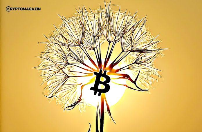 [ANALÝZA] Nezastavitelný Bitcoin – Kam až může vyrůst?