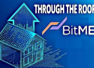 horror-bitcoin-kryptomagazin