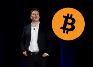 Musk, Bitcoin, brilantní