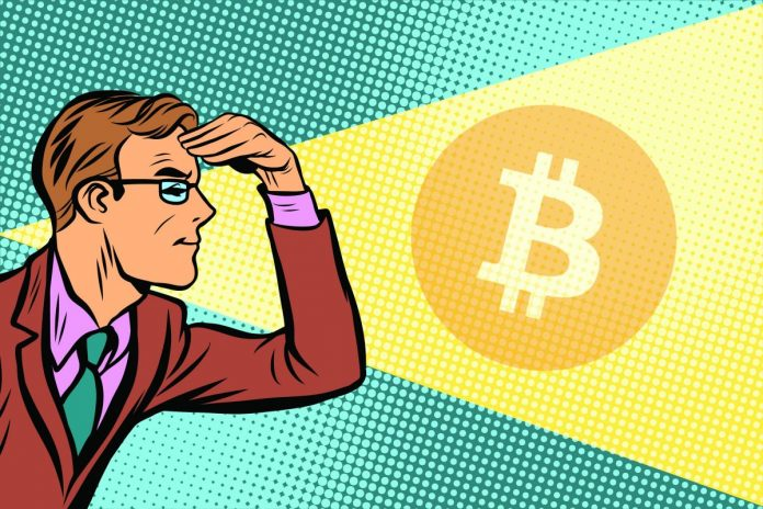 bitcoin, tvůrce, rozhlížet, kreslený, odhalení. pohled