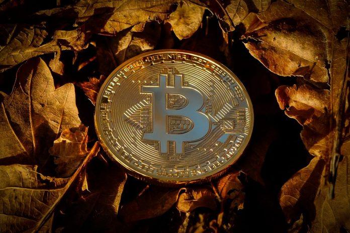 bitcoin, zprávy, události, novinky