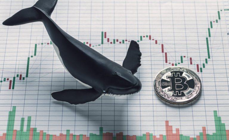 10.02.20 [BTC] Technická analýza: Zbystřete pozornost – BTC v propadu temeř 500 USD! Pattern naznačuje možné korekce na Bitcoinu