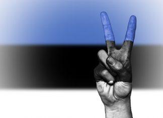 vlajka, ruka