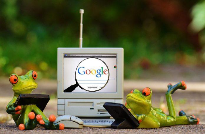 google, žáby, počítač
