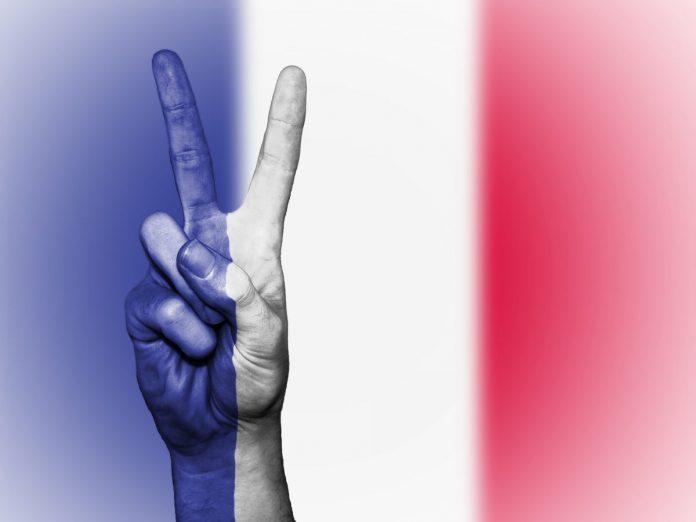 vlajka, ruka, Francie