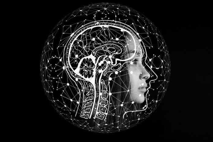 brain, NLP