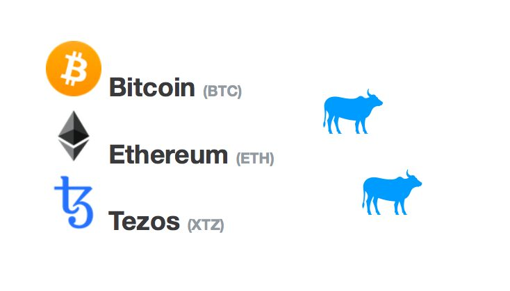 [Přehled trhu] 19.02. [BTC] +2,2%[ETH] +8,5%[XTZ] +13,43% Bitcoin znovu nad 10 000 USD! ETH a XTZ zaznamenávají dobrý start