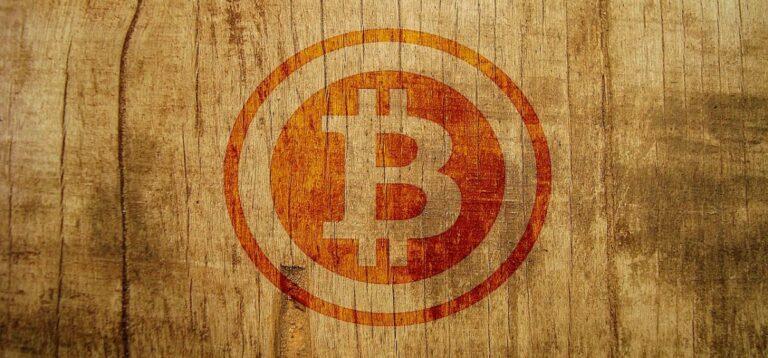 Bitcoin roste rychleji než internet