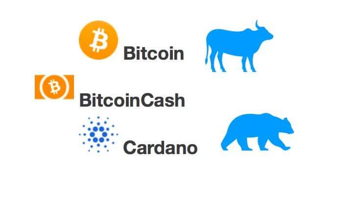 [Přehled trhu] 03.03.20 [BTC] +3,92% [BCH] +9,18% [ADA] +7,76% Konečně! Je to začátek návratu Bitcoinu na 10 000 USD?