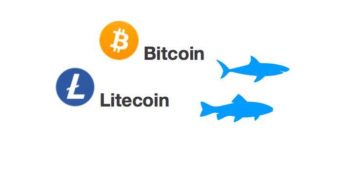 [Přehled trhu] 04.03.20 [BTC] -1,52% [LTC] +1,55% Bitcoin vymazal růst, budeme znovu testovat support 8 500 USD?