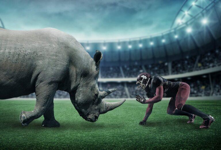 Gray rhino aneb nosorožec v pokoji, kterého všichni ignorují