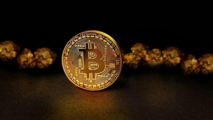 bitcoin, mince, zlata