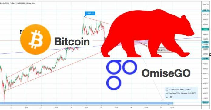 omisego, bitcoin, medvěd