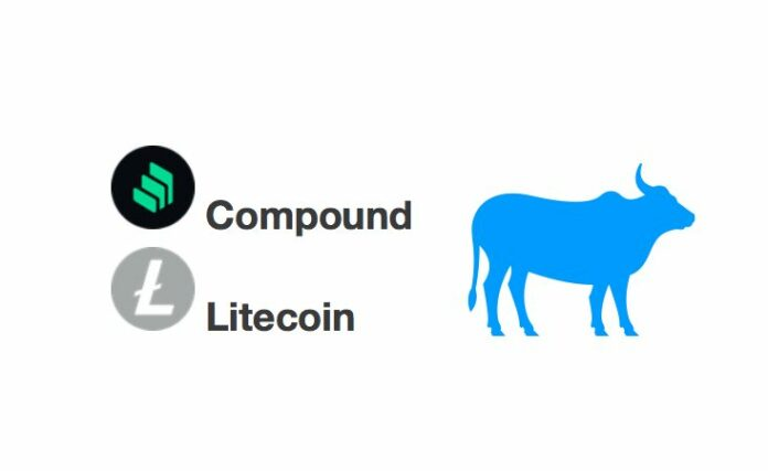 býk, litecoin, compound