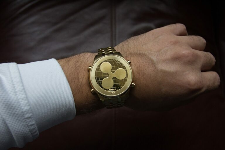CEO Ripple předpovídá bull run pro bitcoiny a krypto trhy