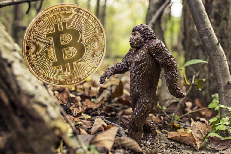 Krypto je dalším krokem v evoluci měn – pokud chce ale uspět, musí se změnit