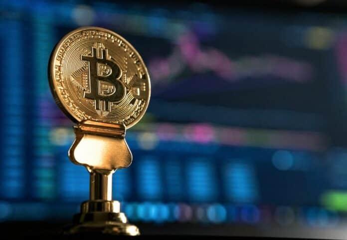 BTC, bitcoin, kryptoměna, klub