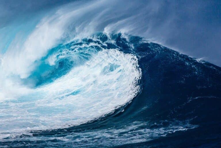 Tyler Winklevoss: Přichází tsunami institucionálních investorů