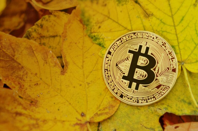 Kanadský podnikatel a politik chce kupovat pouze čisté bitcoiny