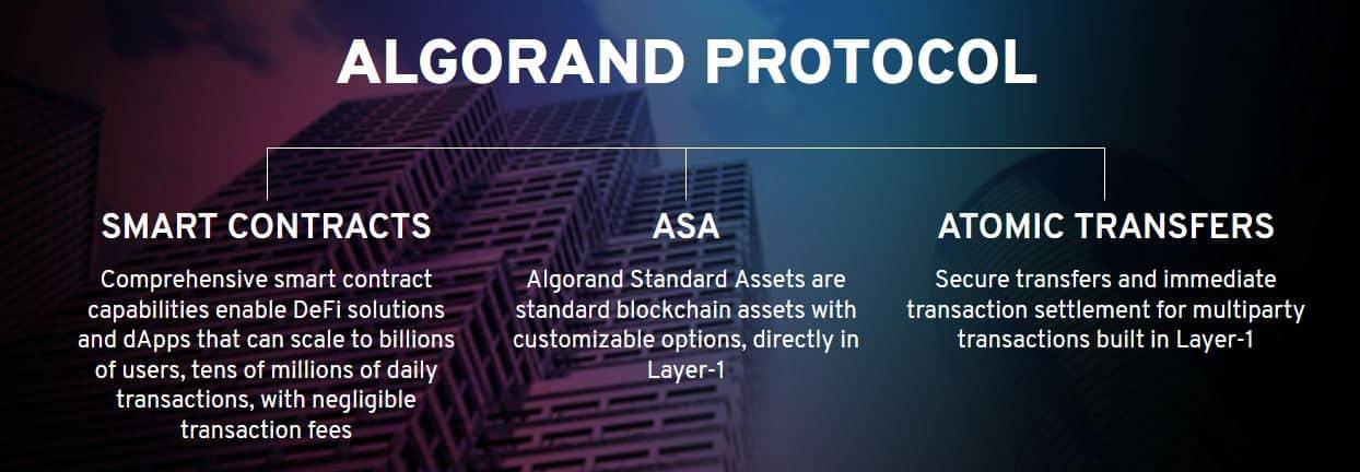 algorand_protocol