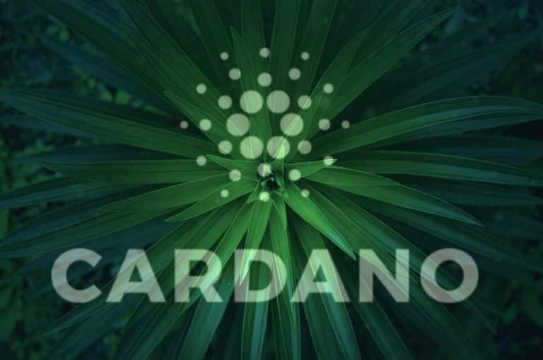 Cardano (ADA) překonává Polkadot (DOT) s 29 miliardami dolarů ve staknutých mincích