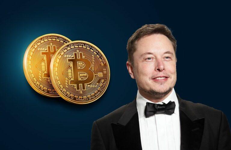 Opravdu Bitcoin nepotřebuje Elona Muska na své straně?