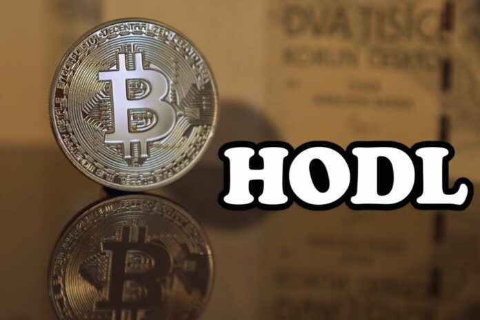 bitcoin btc hodl anketa