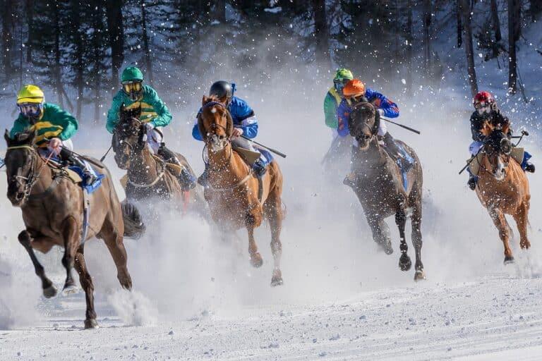 NFT kůň jako něco, co čeho můžete investovat – 1. část